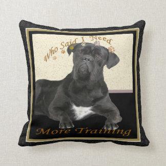 Cane Corso Needs More Training Cushion