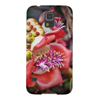 Cannonball Fruit Sala Flower Galaxy S5 Cases