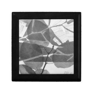 """Canopy No. 1"" Artwork Gift Box"