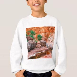 Canyon Hidden Oasis El Cajon Baja Mexico Sweatshirt