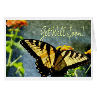 Card Butterfly Oil Get Well Soon