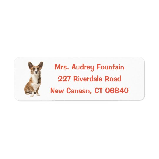 Cardigan Welsh Corgi Puppy Dog