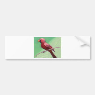 Cardinal Perched Bumper Sticker