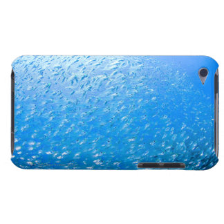 Cardinalfishes swimming underwater iPod touch cases