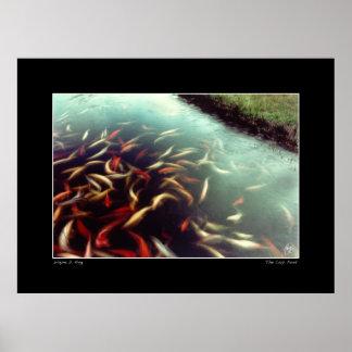 Carp Pond Colors Print