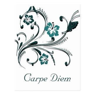 Carpe Diem Postcard Post Cards