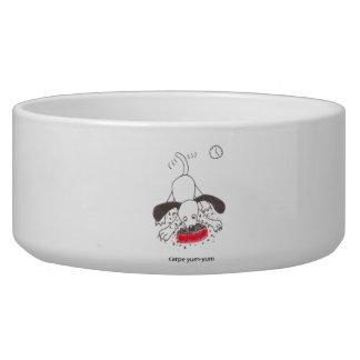 """""""carpe yum-yum"""" food bowl dog bowls"""