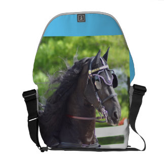 carriage driving courier bags
