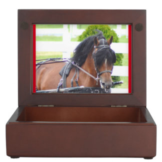 carriage driving horse show memory boxes