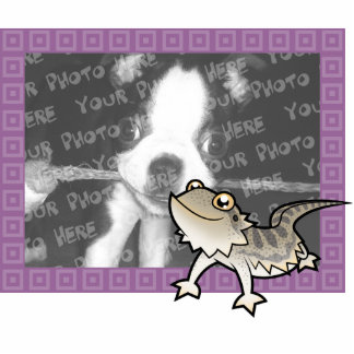 Cartoon Bearded Dragon / Rankin Dragon Photo Sculpture Magnet