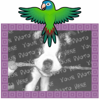 Cartoon Conure / Lorikeet / Parrot Photo Sculpture Magnet