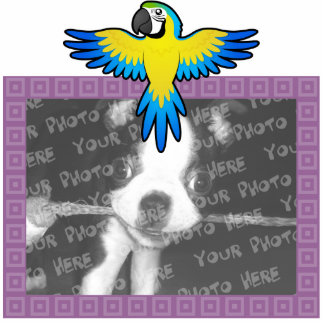 Cartoon Macaw / Parrot Photo Sculpture Magnet