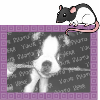 Cartoon Rat Photo Frame Photo Sculpture Magnet