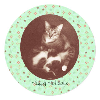 Cat and Kitten Happy Holidays Season's Greetings 13 Cm X 13 Cm Square Invitation Card
