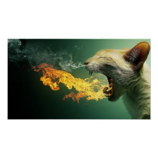 Cat Breathing Fire Poster