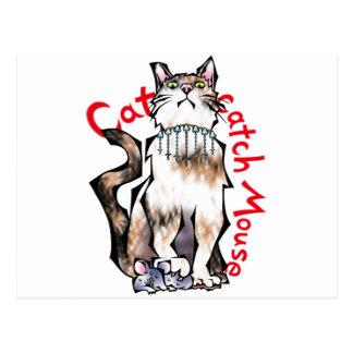 Cat catch Mouse Postcards