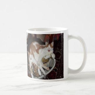cat cuddles basic white mug