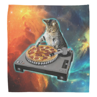 Cat dj with disc jockey's sound table do-rag
