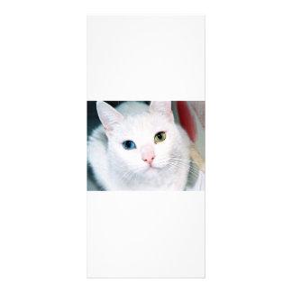 Cat Eyes Custom Rack Card