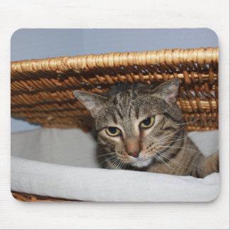 Cat in a hamper mouse pad
