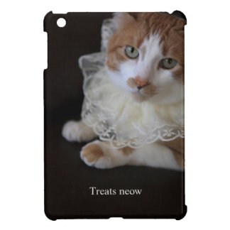 Cat in lacy collar cover for the iPad mini
