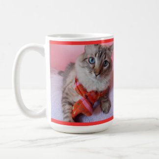 Cat in Scarf n hat Mug