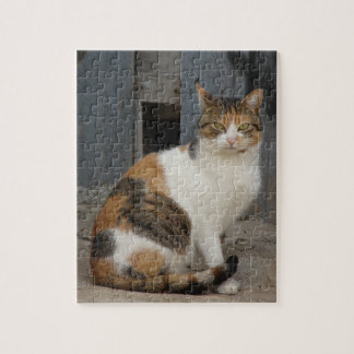 Cat is watching you! jigsaw puzzle