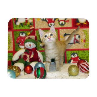 Cat, Kitten, Christmas, Rescue, Photo Rectangular Photo Magnet