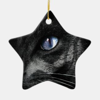 Cat Kitten Eye Stare Look Animal Ceramic Star Decoration