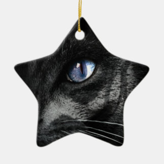 Cat Kitten Eye Stare Look Animal Christmas Ornament