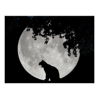 Cat Moon and Branches Poster