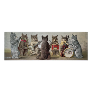 CAT ORCHESTRA POSTER