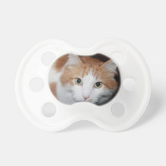Cat Pacifiers