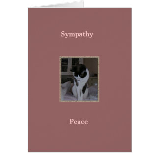 Cat, Pet Sympathy, Peace Card