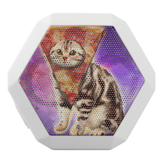 Cat pizza - cat space - cat memes white bluetooth speaker
