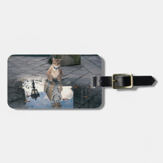Cat reflection - fat cat - cat memes -  cute cats luggage tag