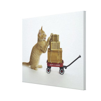 Cat with wagon and boxes canvas print