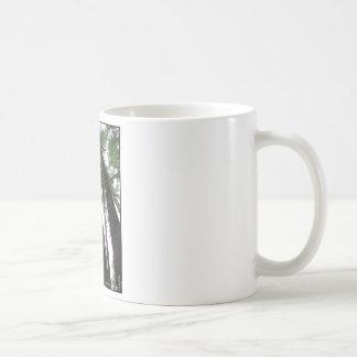 Cathedral  Grove. British Columbia Gylliayn Art Coffee Mug