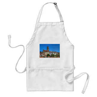 Cathedral of St. Nicholas in Fribourg, Switzerland Standard Apron