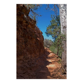 Cathedral Rock Trail 3952 Poster