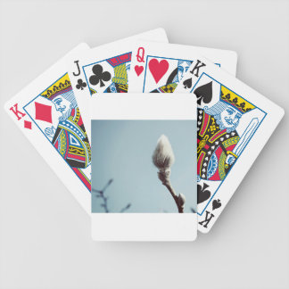 Catkin winter Willow Tree Bicycle Playing Cards