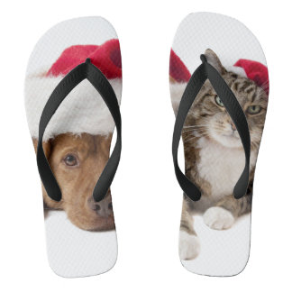 Cats and dogs - Christmas cat - christmas dog Jandals