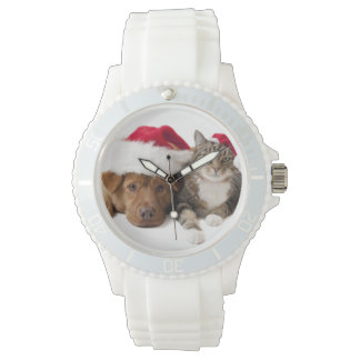 Cats and dogs - Christmas cat - christmas dog Watch
