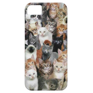 Cats Case For The iPhone 5