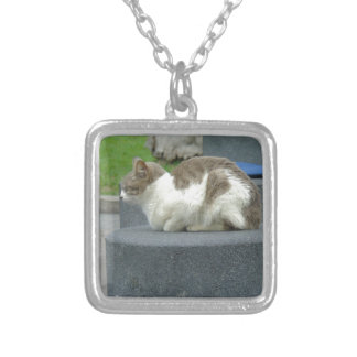 Cats Love Square Pendant Necklace