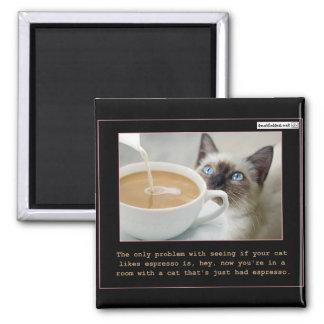 Cats On Espresso Fridge Magnet