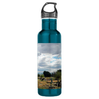 Cattle At Dolphin Pond 710 Ml Water Bottle