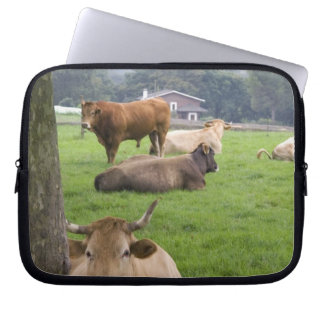 Cattle on rural farmland near the town of laptop sleeve