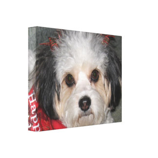 Cavachon Happy Holidays Wrapped Canvas