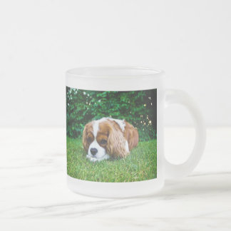 Cavalier King Charles Spaniel Blenheim in Grass Frosted Glass Coffee Mug